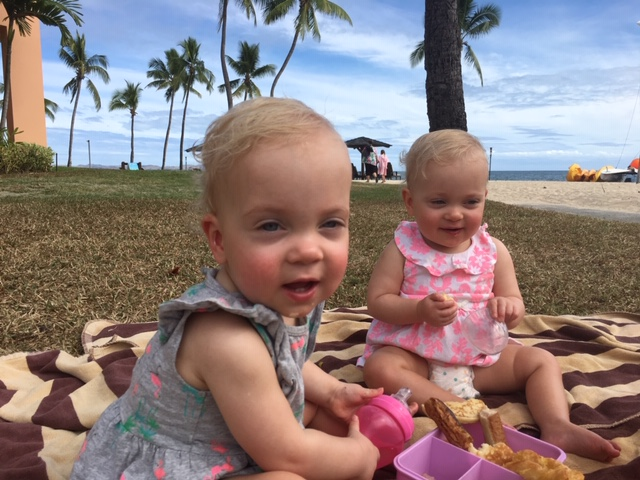 Plenty of picnics in Fiji